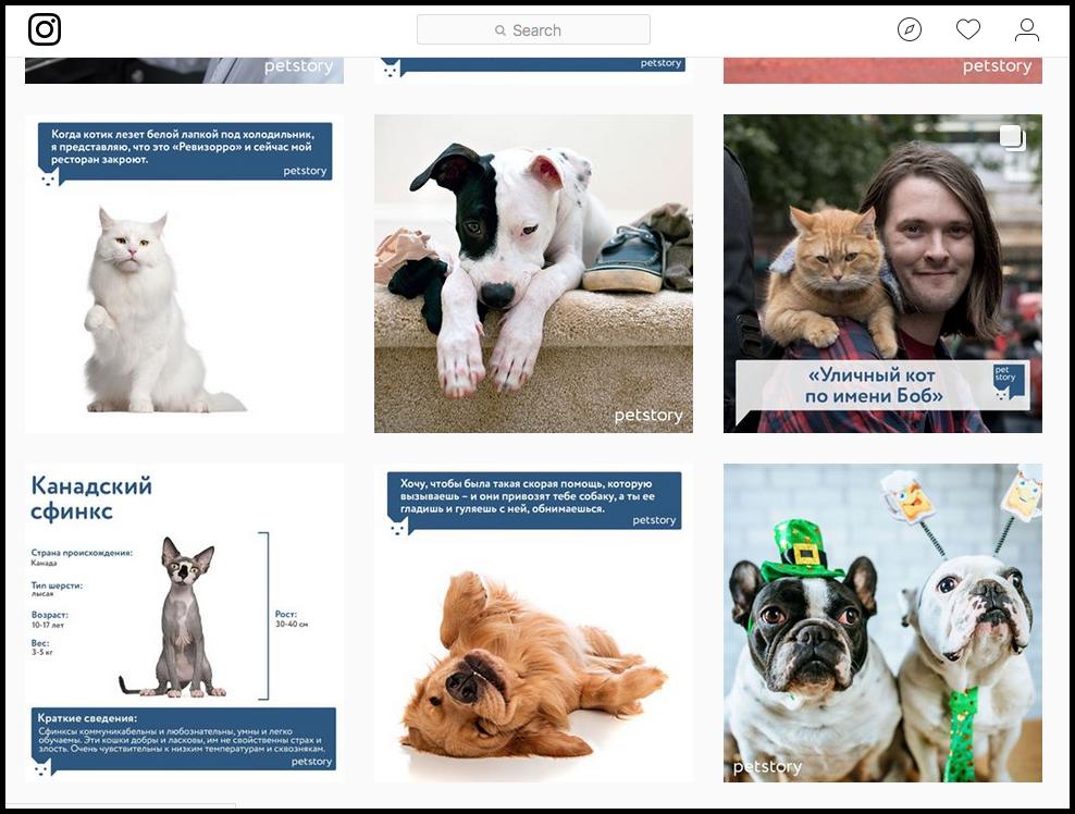 пример брендового оформления постов в инстаграм